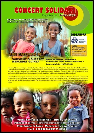 Destino Etiopia 20131215 01 cat